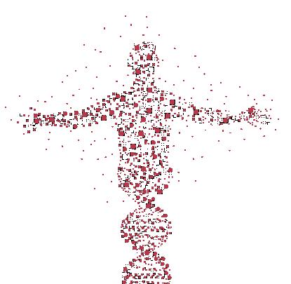 Sobre a Nanomark